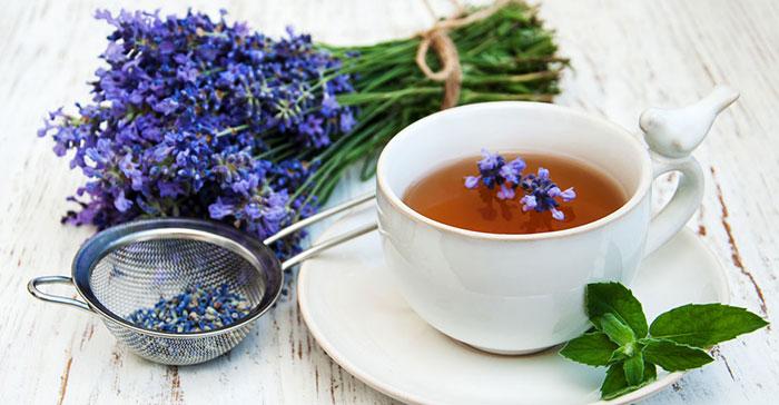 خواص و طرز تهیه چای اسطوخودوس